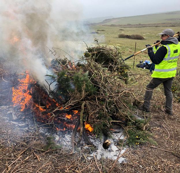 volunteers-burning-gorse-on-the-towans